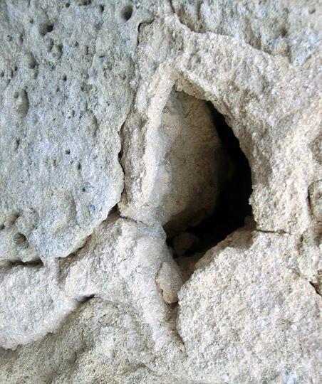 פות חצובה באבן
