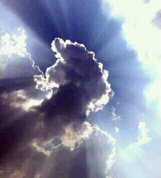 פין הענן קרב אל פות השמש - סמארטפון נובמבר 2013