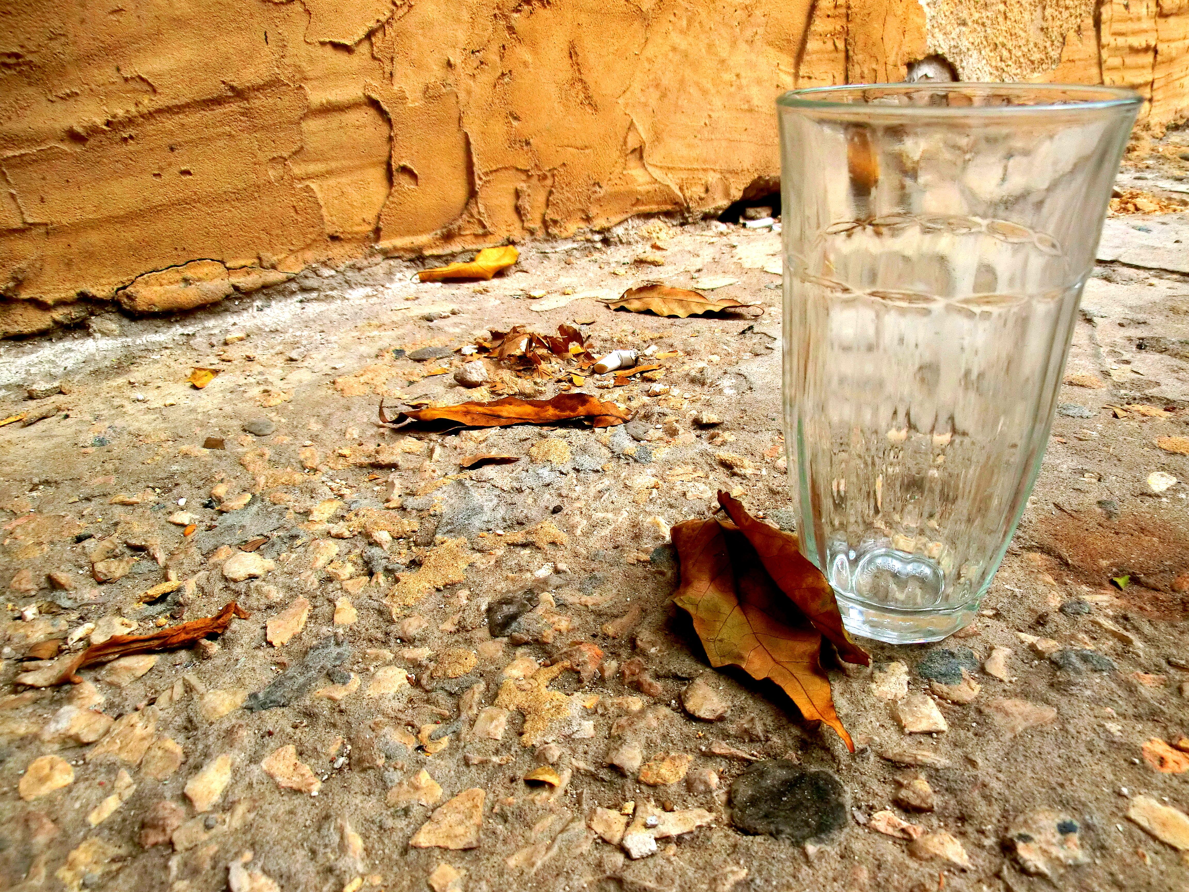 כוס זכוכית ועלים יבשים על בטון